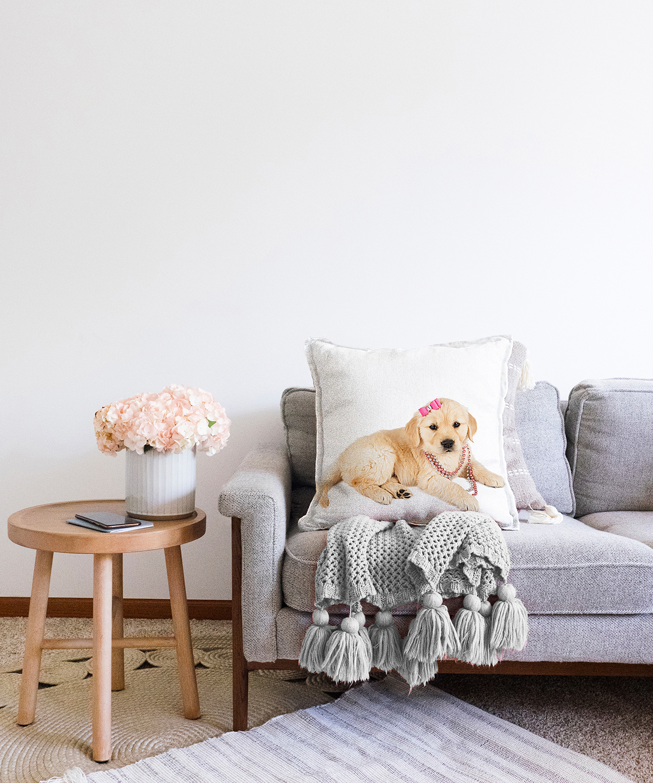 Çift Taraflı Sevimli Köpek Desenli Dijital Baskılı Modern Şönil Yastık Kırlent Kılıfı - 55 x 55 cm Realhomes